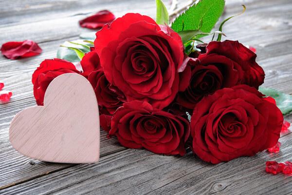 rosen die ich an dich verschenke