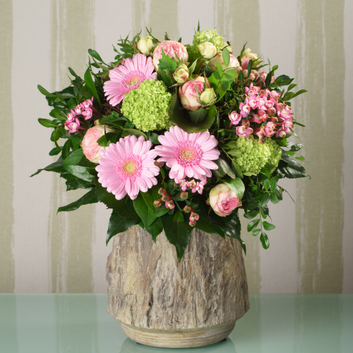 Herzlichen Glückwünsch Angel! Blumenstrauss-germini-rosen-rosa-1