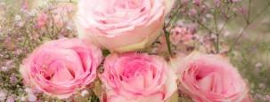 Schleierkraut im Blumenstrauß