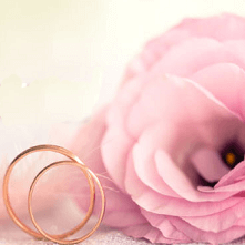 Rosa Rosen als Hochzeitsblumen