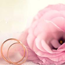 Rosa Rosen als Blumenstrauß zur Hochzeit