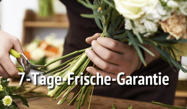 Rosenschere Blumenstrauß anschneiden