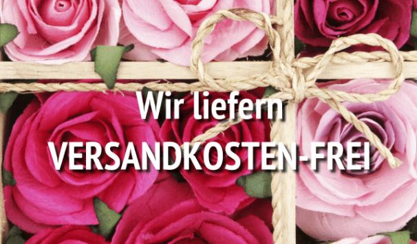 versandkostenfrei Blumen verschicken