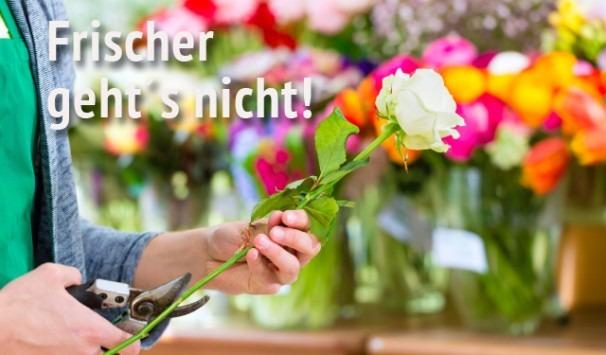 7 Tage Frischegarantie für Blumensträuße von Blumenversand Edelweiß