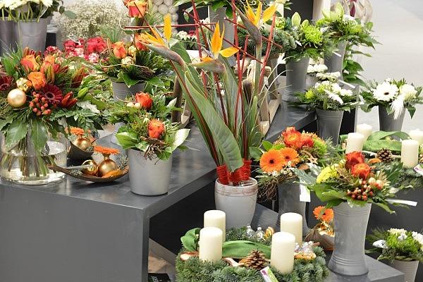 Kaufland Blumen