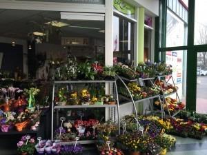 Blumenladen Eisenach