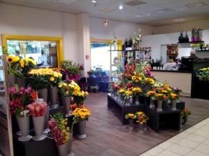Blumenladen Witzenhausen