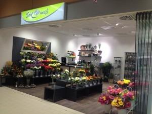 Blumenladen Meiningen