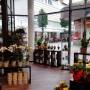 Blumenladen Bad Hersfeld