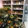 Topfpflanzenregal Edelweiss Schmalkalden