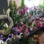 Blumenladen Bad Langensalza