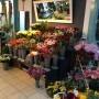 Blumenladen Rudolstadt