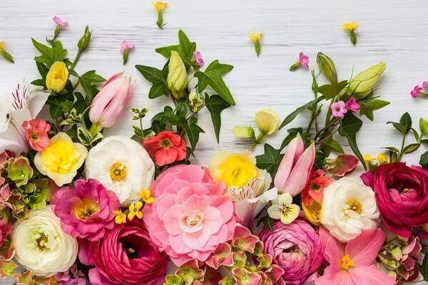 Bilder Blumensträuße