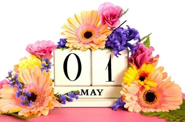 Blumenkalender erstes Halbjahr
