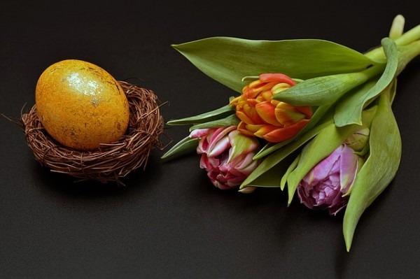 Blumen zu Ostern und ein Osterei