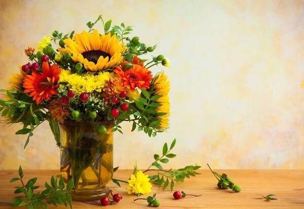 Herbstblumen Top 5