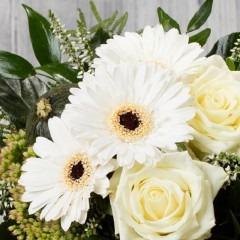 weiße Germni und Rosen