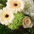 """Blumenstrauß """"Geteilte Freude"""""""
