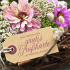 Gratis Grußkarte rosa Blüte